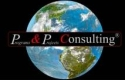 Programs & Projects Consulting